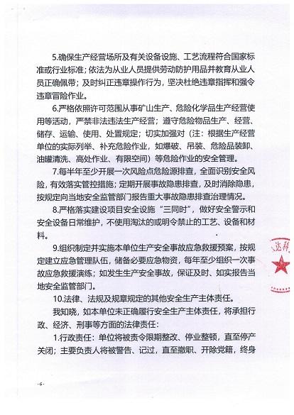 深圳市生产经营单位主要负责人安全生产主体责任承诺书